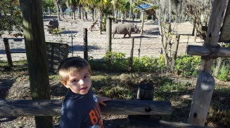 January Tampa Zoo
